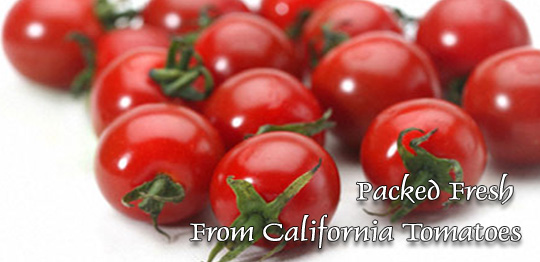 Packed Fresh From California Tomatoes